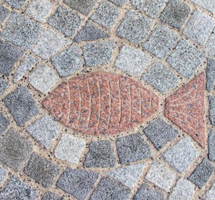 Steinfisch am Meeresmuseum